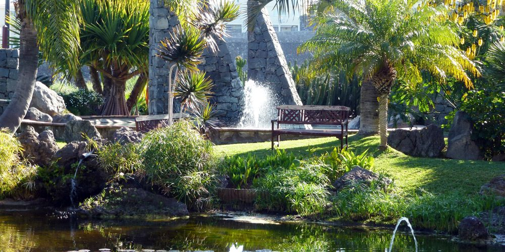 KanarenExpress: An oasis for all your senses with Tenerife Verde