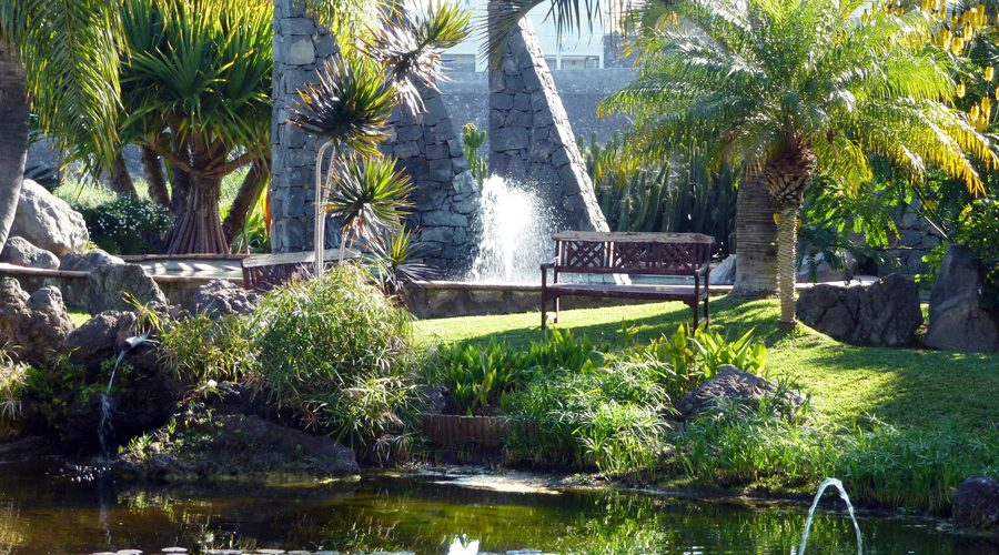 KanarenExpress: An oasis for all your senses with Tenerife Verde