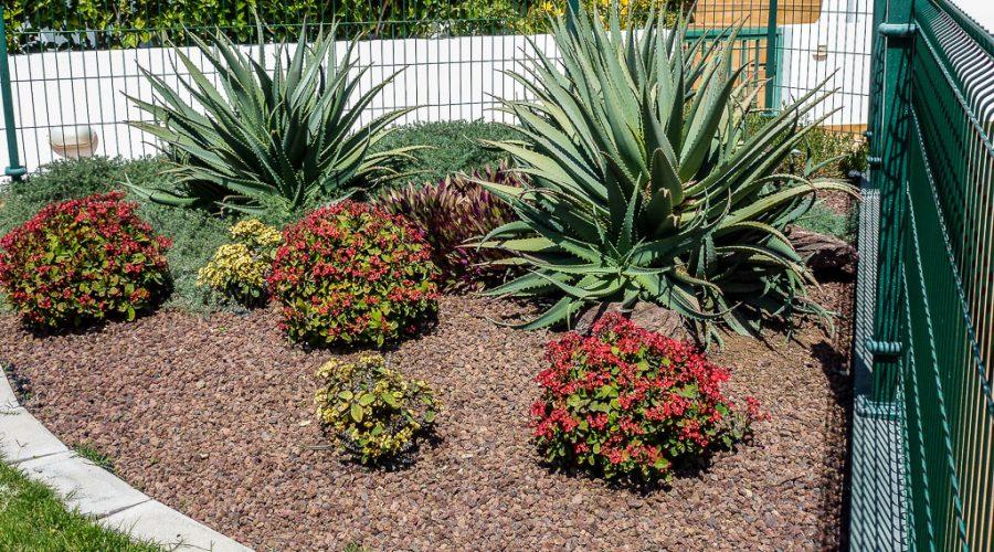 Garten & Bewässerung