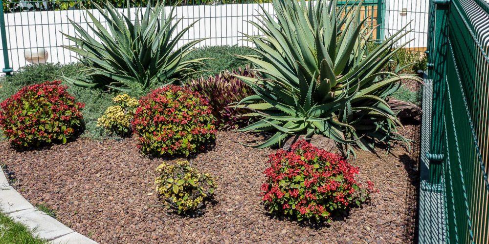 Garden & Irrigation