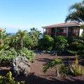 Tenerife Verde pflegt Ihren Garten auf Teneriffa