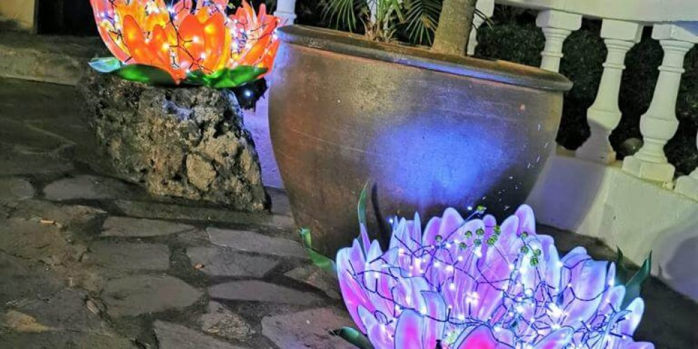 Akzente setzen mit Tenerife Verde