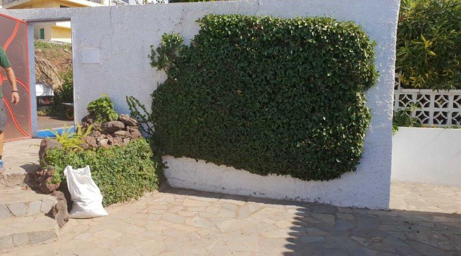 Tenerife Verde übernimmt Um- und Ausbauten